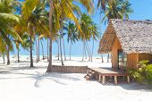 foto of beach-house  - Traditional wooden bungalow on tropical white sandy beach dotted with coconut palm trees - JPG