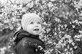 Cute Toddler Boy Smiling