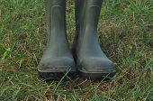 pic of boot  - Rain boots rubber boots standing on a wet meadow - JPG