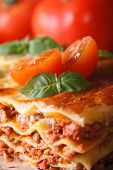 picture of lasagna  - Delicious hot lasagna with basil and tomatoes macro vertical - JPG
