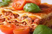 Lasagna With Fresh Basil And Tomatoes Macro Horizontal