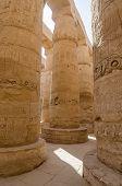 Columns in Precinct of Amun-Re  (Karna, Luxor, Egypt)