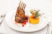 pic of lamb chops  - Roasted Lamb Chops - JPG