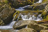 pic of virginia  - Quiet Water on the Rose River in Shenandoah National Park in Virginia - JPG