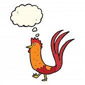 foto of cockerels  - cartoon cockerel - JPG