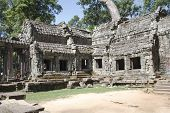 stock photo of raider  - Roots of a spung running along a stone wall in the temple of Ta Prohm - JPG