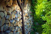 stock photo of firewood  - Pile of Firewood Awaiting Winter Season - JPG