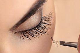 stock photo of eyebrows  - Makeup close - JPG