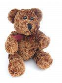 Braune Teddybär
