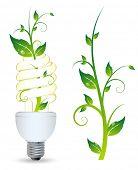 lâmpada de luz verde