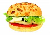 foto of veggie burger  - healthy vegetarian hamburger with wholegrain bread and lot of fresh vegetables - JPG