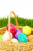 picture of easter basket eggs  - Eggs in the basket and grass isolated on white - JPG