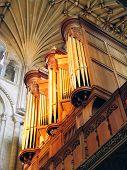 Norwich Cathedral Organ
