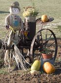 Strawman,Tractor Seat And Pumkins