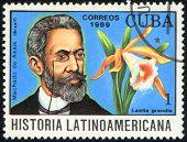 História da América Latina - Brasil