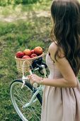 Partial View Of Woman In Dress Holding Retro Bicycle With Wicker Basket Full Of Ripe Apples At Count poster