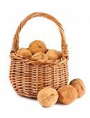 Wicker Basket With Walnuts