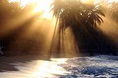 Sunset In Caribbean