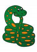 picture of king cobra  - The illustration Pensive snake on white background - JPG