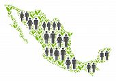 People Population And Flora Plants Mexico Map. Vector Pattern Of Mexico Map Created Of Randomized Ma poster