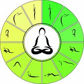 image of surya  - Vector Illustration of Yoga Surya Namaskara cycle - JPG