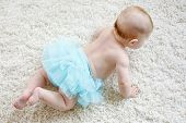 Adorable Baby Girl On White Background Wearing Turquoise Tutu Skirt. Cute Little Child Laughing And  poster
