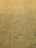 human footprints in the sand run off into the distance