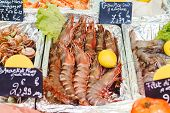 Raw Uncooked Large Shrimp For Sale At Farmers Market. Sea Food Market. Stock Photo Large Shrimps And poster