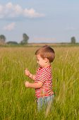 Cute little boy playing on the meadow on sunny summer day