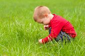 Cute little boy exploring the nature on beautiful spring day