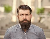 Feeling Manly. Caucasian Guy. Styling Beard And Moustache. Facial Hair Treatment. Hipster With Beard poster