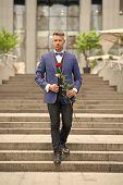 Romantic Gentleman. Man Mature Confident Macho With Romantic Gift. Handsome Guy Rose Flower Romantic poster