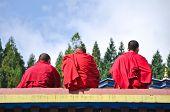 Three Tibetian Lamas  At Ramtek Monastery In Gungtok