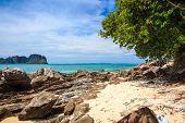 Isla de bambú, Phi Phi