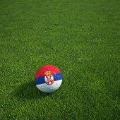 3D Darstellung einer serbischen Soccerball lying on grass