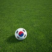 3D Darstellung einer südkoreanischen Soccerball lying on grass