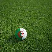 3D Darstellung einer algerischen Soccerball lying on grass