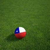 3D Darstellung einer Chilian Soccerball lying on grass