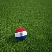 3D-Rendering ein paraguayischer Soccerball lying on grass