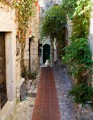 Narrow Street In Eze Village With A Pot