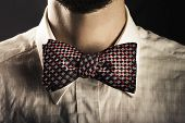 Man Wearing An Elegant Bow Tie