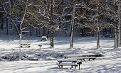 stock photo of blanket snow  - A heavy blanket of snow covers the picnic area of John Boyd Thacher Park in Voorheesville New York - JPG