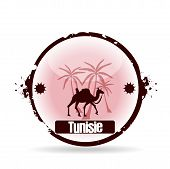 foto of dromedaries  - stamp tunisia with dromedary and palm in africa - JPG