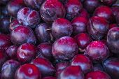 stock photo of plum fruit  - Ripe purple organic plums useful as a background or texture - JPG