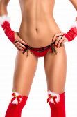 Slim alluring  female body posing in sexy santa lingerie