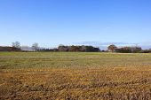 Autumn Arable Lands