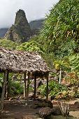 Maui's 'Iao Needle