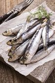 sardine marinated