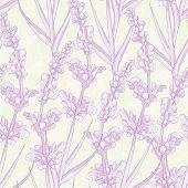 Wedding Invitation Card.  Lavender Background.