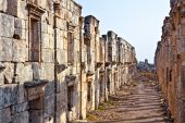 stock photo of cardo  - Pompey made Apamea (Apameia) or Afamia (Arabic) part of the Roman Empire in Syria. Cardo maximus street with columns. Roman and Byzantine period